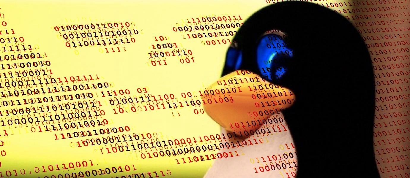 Como escanear seu servidor linux por Malwares (Debian/Ubuntu)