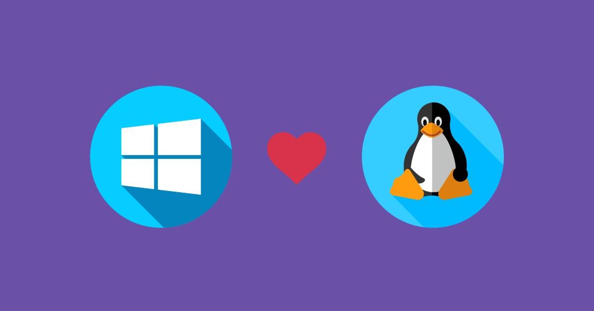 Windows e Linux
